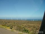 Em La Canela vimos muitos  eólicos
