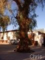 San Pedro de Atacama, Praça das Armas