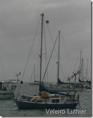 Menor veleiro na baia