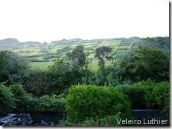 Quinta de São Leopoldo