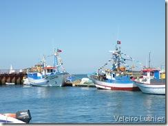 Barcos preparados para procissão